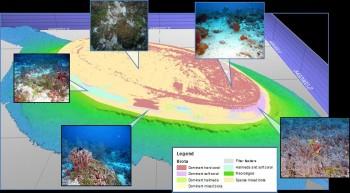Habitat map of a shoal