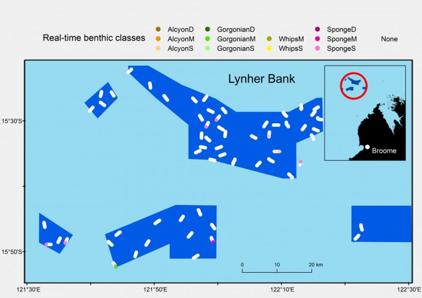 Sea floor habitat categories recorded using underwater towed video.